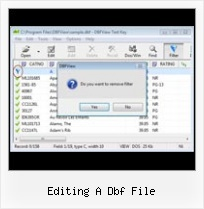Free Xls To Dbf Converter editing a dbf file